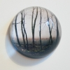 4-Waarneming in glazen bol, fotoprint, diameter 15 cm