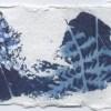 Ellen Geerts: Boerenwormkruid, inkt op papier, 5,5 x 8 cm (lijst 12 x 17 cm). 95 euro