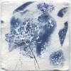 Ellen Geerts: Herbarium 2, inkt op papier, 10 x 10 cm (lijst 15 x 15 cm). 145 euro