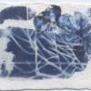 Ellen Geerts: Hortensia 2, inkt op papier, 5,5 x 8 cm (lijst 12,5 x 17,5 cm). 95 euro
