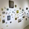 Marieke Peters: achterwand in de galerie (winter 2019-2020)