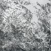 Wolkenlucht (2016) ets (oplage 4) 15 x 20 cm