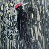 Zwarte specht (2009) linodruk (oplage 6) 30 x 30 cm