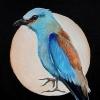 Bluebird acryl op doek op paneel, 22 x 16 cm