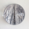 5-Waarneming in glazen bol, fotoprint, diameter 15 cm